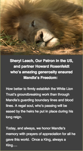 Global White Lion Protection TrustScreenshot 2015-12-13 19 06 50