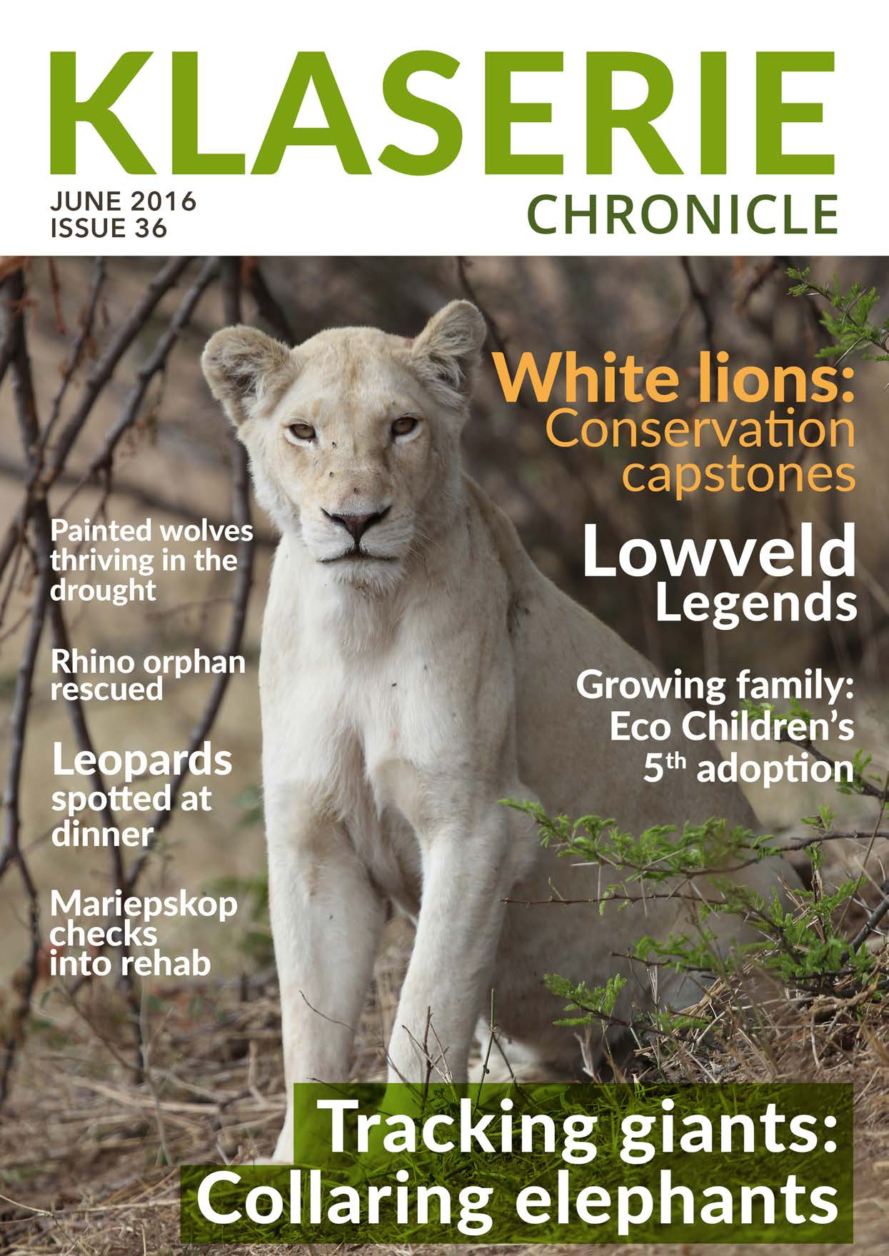 Klaserie Chronicle_WLT_White Lion Article 2016[4] 1